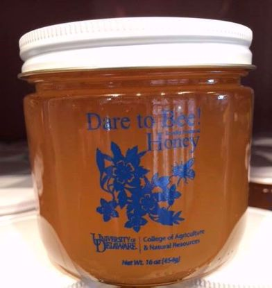 Picture of Honey Jar